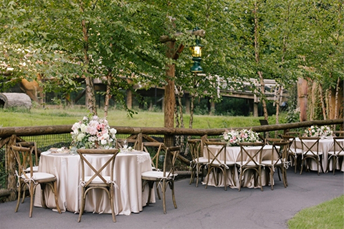 Memphis Zoo Catering Meetings Picnics Wedding Receptions